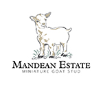 Mandean Estate Logo